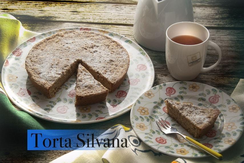 Torta morbida Silvana